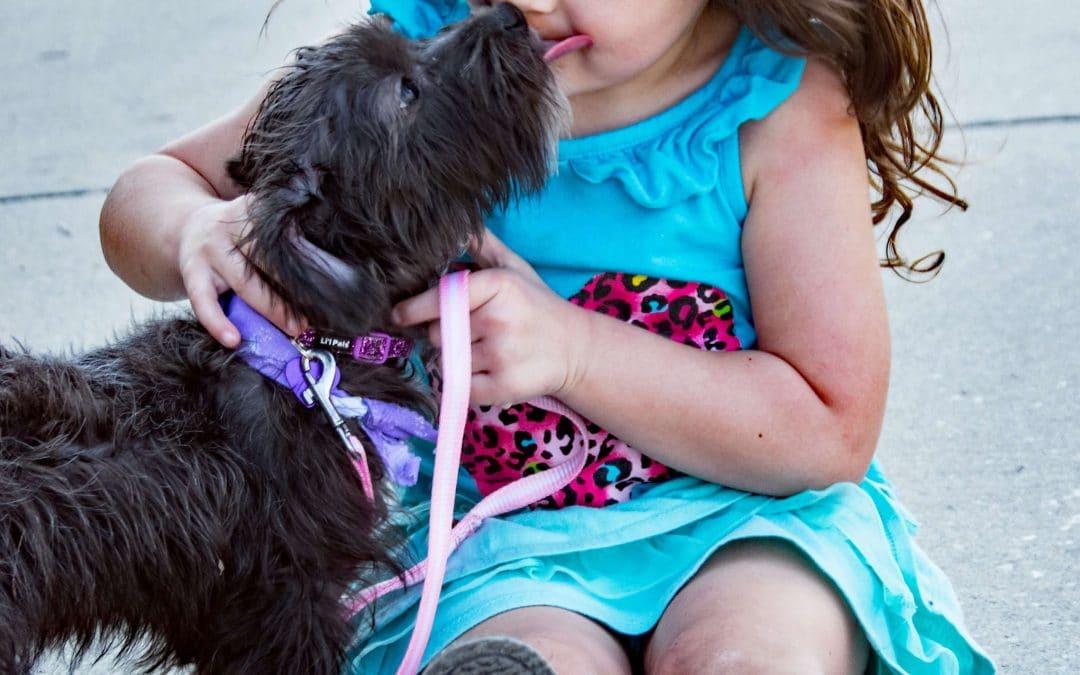 Jaki pies będzie najlepszym przyjacielem dziecka?